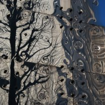 Tree reflection on a building in Tokyo