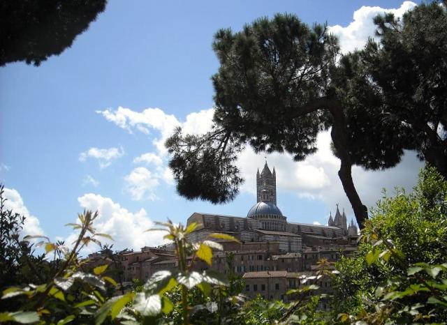 San Domenico in Siena